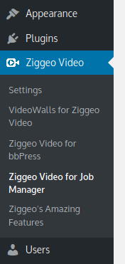 Ziggeo Video for Job Manager - settings