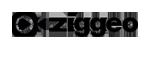 Ziggeo Blog